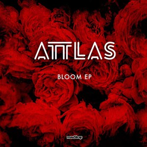 Photo of Attlas – Bloom
