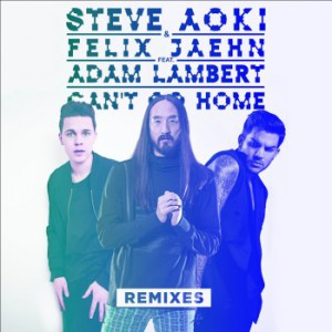 Steve Aoki - Can'T Go Home (The Remixes)
