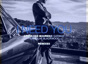 Armin Van Buuren - I Need You (Remixes)