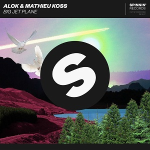 Photo of Alok & Mathieu Koss – Big Jet Plane