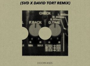 Photo of Sander Van Doorn – Riff (SvD x David Tort Remix)