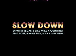 Dimitri Vegas & Like Mike x Quintino - Slow Down