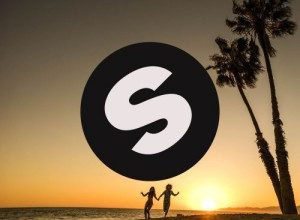 Redfoo & Vinai – Everything I Need