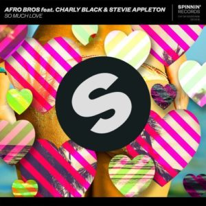 Photo of Afro Bros feat. Charly Black & Stevie Appleton – So Much Love
