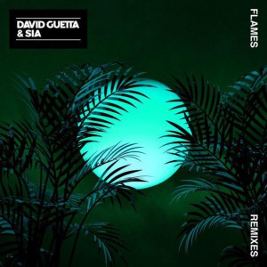 Photo of David Guetta & Sia – Flames (Robin Schulz Remix)