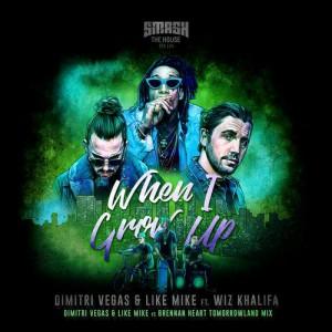 Dimitri Vegas & Like Mike - When I Grow Up Tomorrolan Remix