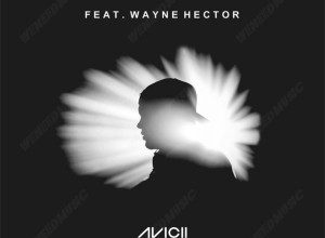 Photo of Avicii ft. Wayne Hector – Free