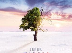 Photo of Cold Blue – Winter 2019 Album