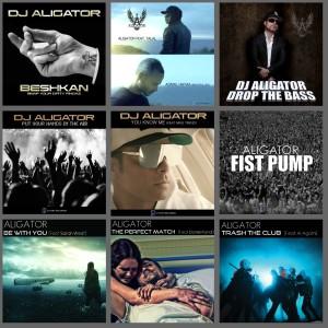 Photo of چارت آهنگ های جدید Dj Aligator
