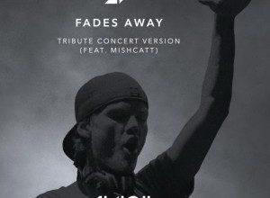 Photo of Tribute Concert In Loving Memory of Tim Bergling