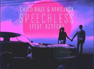 تصویر Chico Rose & Afrojack – Speechless