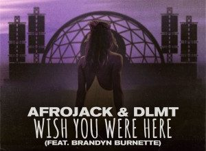تصویر Afrojack & DLMT – Wish You Were Here