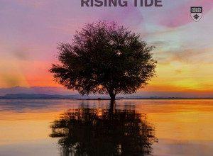 تصویر Bobina – Rising Tide