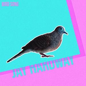 دانلود آهنگ خارجی از Jay Hardway بنام  Bird Song