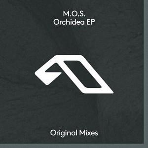 M.o.s. - Orchidea EP
