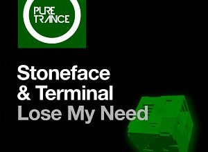 Stoneface & Terminal - Lose My Need